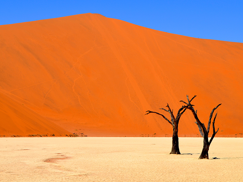 """Wallpaper World, Deadvlei, Namibia.  Deadvlei means 'dead marsh' and is surrounded by some of the largest dunes in the world.  The trees in Deadvlei are almost 1,000 years old.""  - Staff Member Valerie Ong."